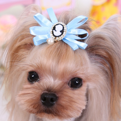 Pet Headdress Teddy Yorkshire Dog Twinkle Crown Ribbon Hairpin Accessories